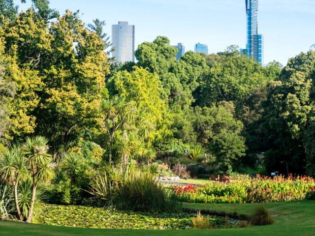 Ο κορονοϊός με έκανε να είμαι τόσο ευγνώμων για τα πάρκα της πόλης. Πρέπει να αγωνιστούμε για αυτά.