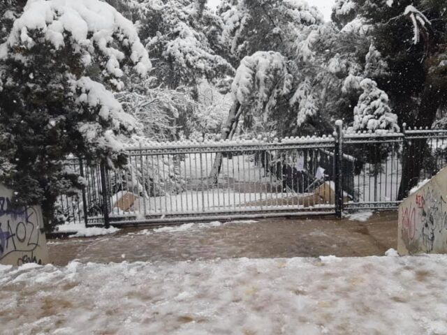 Το χιονισμένο Πάρκο είναι κλειστό!