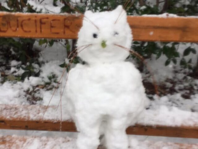 Επιτέλους άνοιξε το χιονισμένο Πάρκο